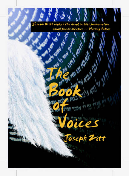 Book Of Voices