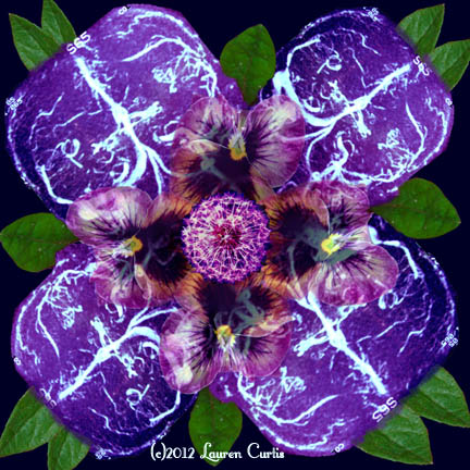 BrainFlower (c)Lauren Curtis Sept.2012 Digital Photo Collage