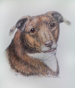 Pet Portrait, pen & ink w/ watercolors, Dec2014