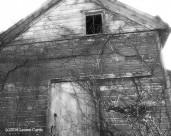 AbandondedBarnNJ2 Apr2016sm